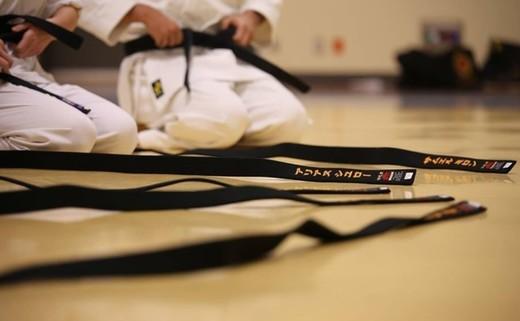 Regular_karate_6