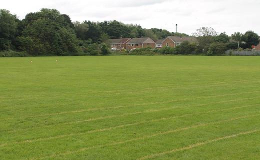 Regular_pvnl_grass-pitches_1040x642