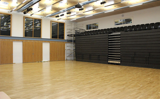 Regular_wren_school_hall_1040x642
