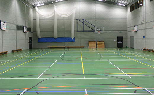 Regular_wren_sports_hall_1040x642