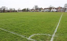 Thumb_wren_grass_pitch_1040x642