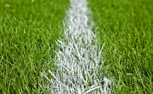 Regular_football-grass-pitch-101072