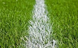 Thumb_football-grass-pitch-101072