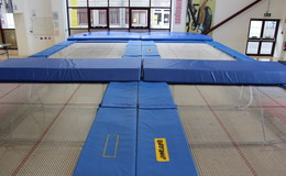 Thumb_fearns_trampolines