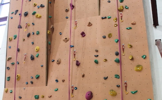 Regular_fearns_climbing_wall