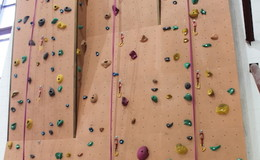 Thumb_fearns_climbing_wall