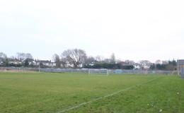 Thumb_king_david_2_grass_pitches_th