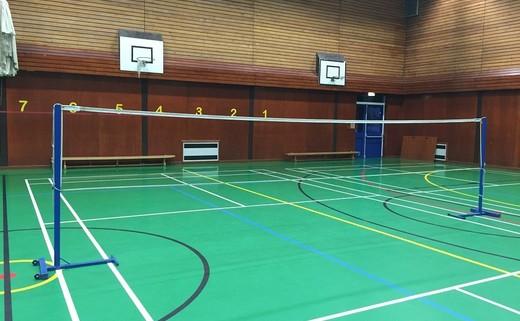 Regular_sports_hall_-_badminton__2_