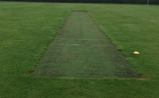 Regular_cricket_practise_wicket