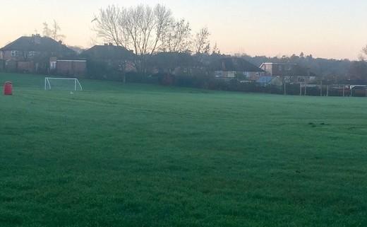Regular_grass_pitch_b