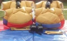 Thumb_adult_sumo_suits