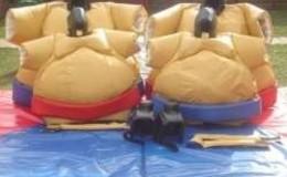 Thumb_children_sumo_s_suits