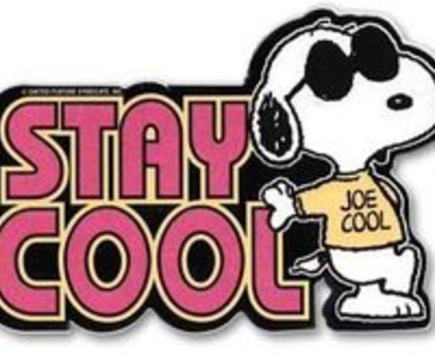 Stay Cool Marshland!