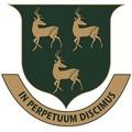 Pvs_logo_square