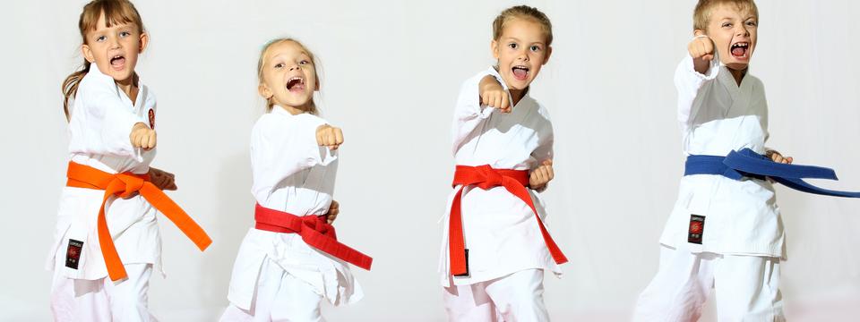Regular_martial_arts_kids