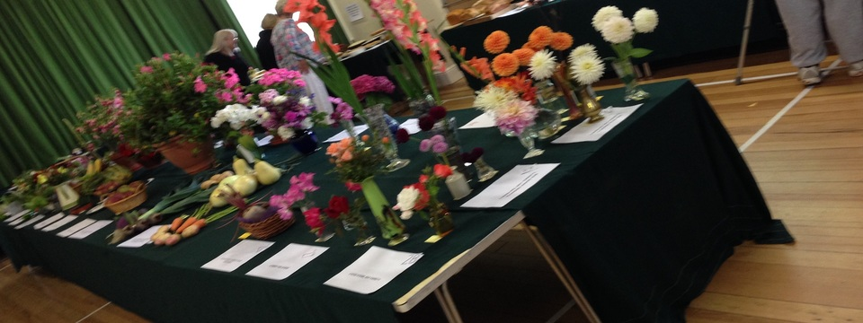 Regular_horticultural_show_2014_hp