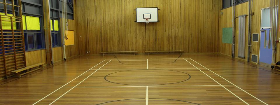 Regular_hayfield_-_gymnasium_sl