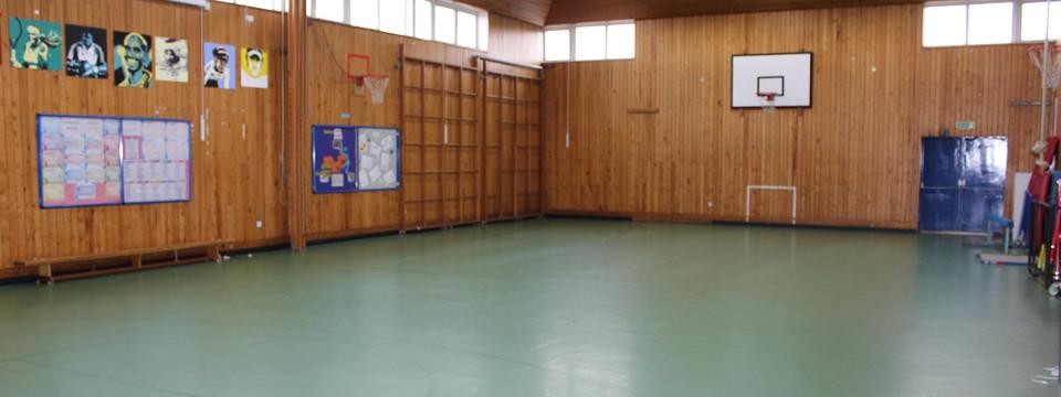 Regular_finham_park_-_gymnasium_2