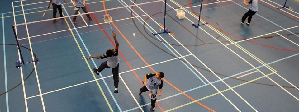Regular_eagle_badminton